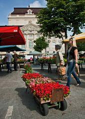 Blick vom Kaiser Franz Josef Markt auf die Grazer Oper!