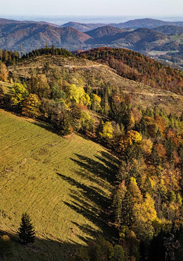 Blick vom Plesch auf die sonnendurchflutete Herbstlandschaft