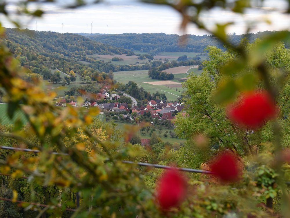 Blick vom Schloss Langenburg