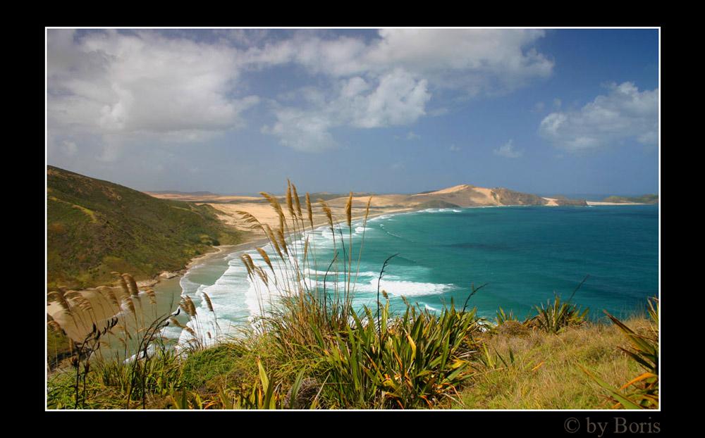 Blick von Cape Reinga auf das Cape Maria van Diemen
