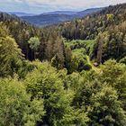 Blick von der Schwarzenbachtalsperre Richtung Raumünzach