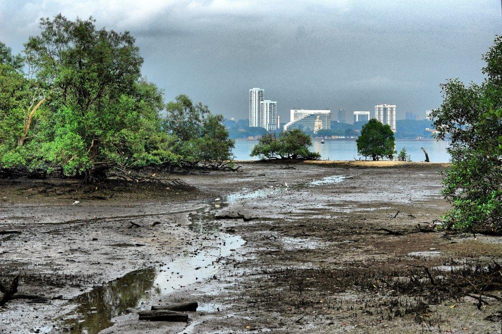 Blick von Sungei Buloh auf Johor Bahru