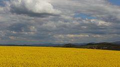 Blick zum höchsten Deutschen Berg östlich der Elbe...