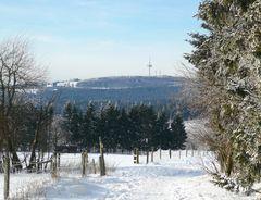 """"""" BLICK ZUM HOHERODSKOPF """"  764 m"""
