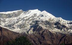 Blick zum Tukuche (6920m)