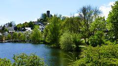 Blick zur Burgruine Bad Lobenstein