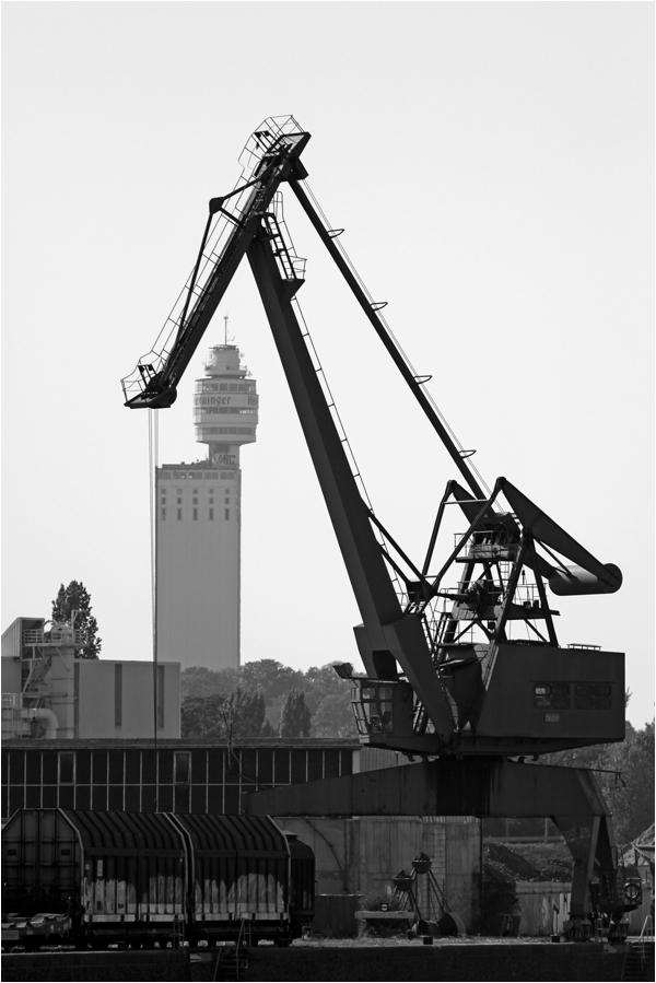 Blickpunkt der Hafenarbeiter