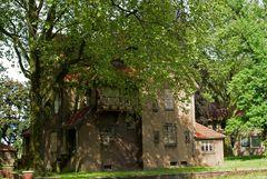 Bliersheim 2
