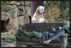 ...Blind Date mit Knut...
