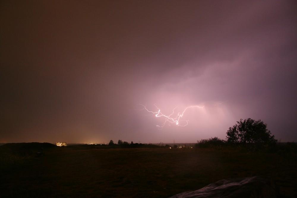 Blitz auf Augenhöhe