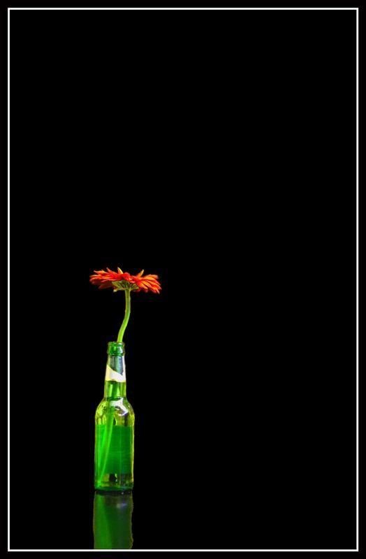 Blooming Drunk