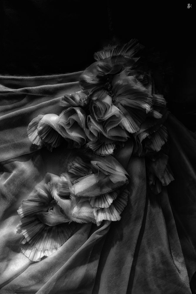 blossom.flower.gown