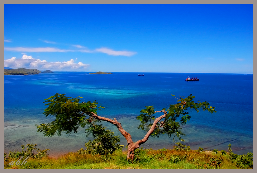 Blue at Port Moresby