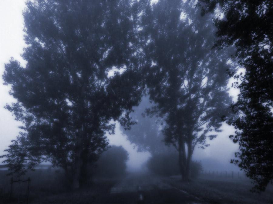 """""""Blue"""" aus der Reihe """"Hidden Highways"""""""