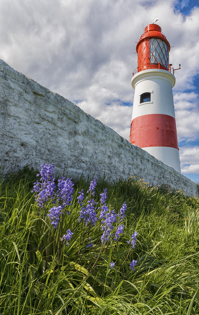 blue bells and lighthouse...