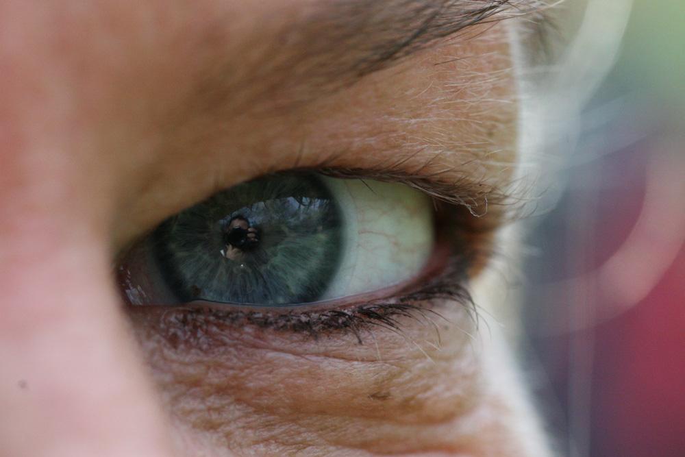 Blue Eye Makro