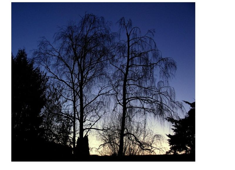 Blue Hour today