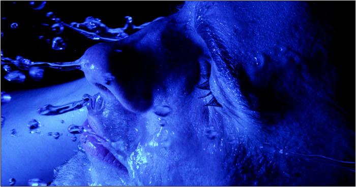 - blue II -