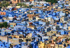 Blue Jodhpur