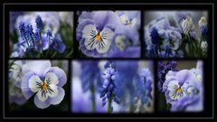 ~blue monday~