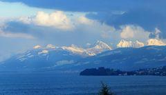 Blue Monday am Zürichsee