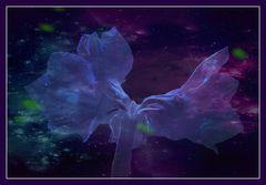 Blue Monday- Blue Blossom