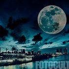 Blue Moon Miami