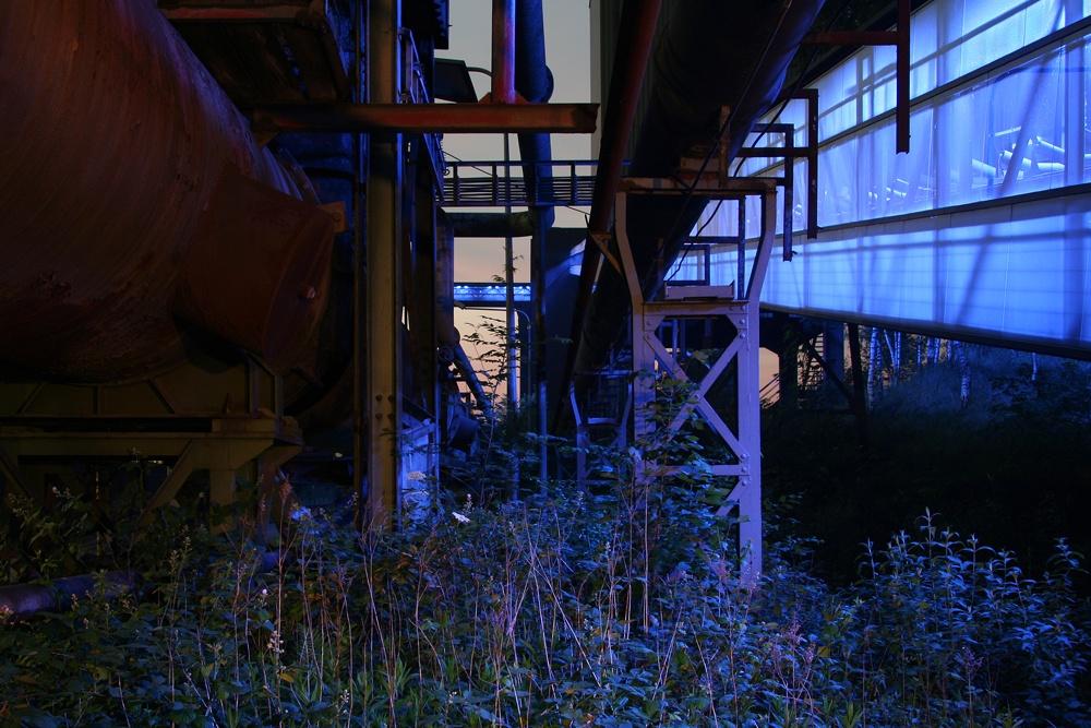 Blue Nature - Kokerei Hansa in Dortmund