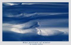Blue portrait of winter