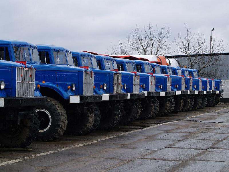 Blue powerhorse army