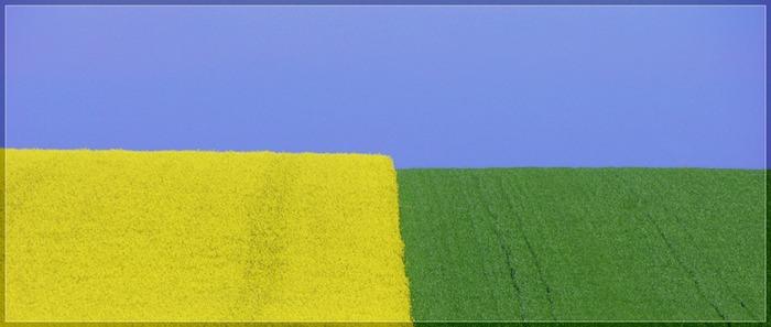 blue yellow green