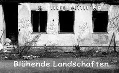 Blühende Landschaften ,Gebäude in Markranstädt (bei Leipzig)