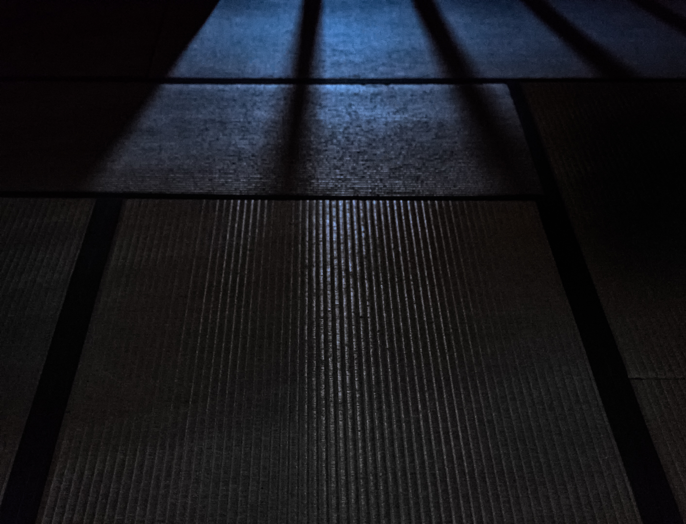 blue.night.tatami