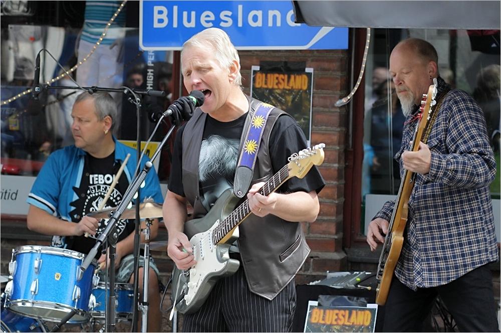 Bluesland Mönsteras