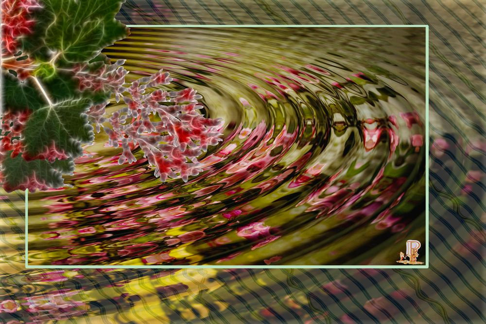 Blüten im Wasserrahmen