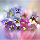 Blüten in Pastell...