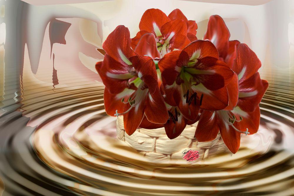 Blütenkorb_0395