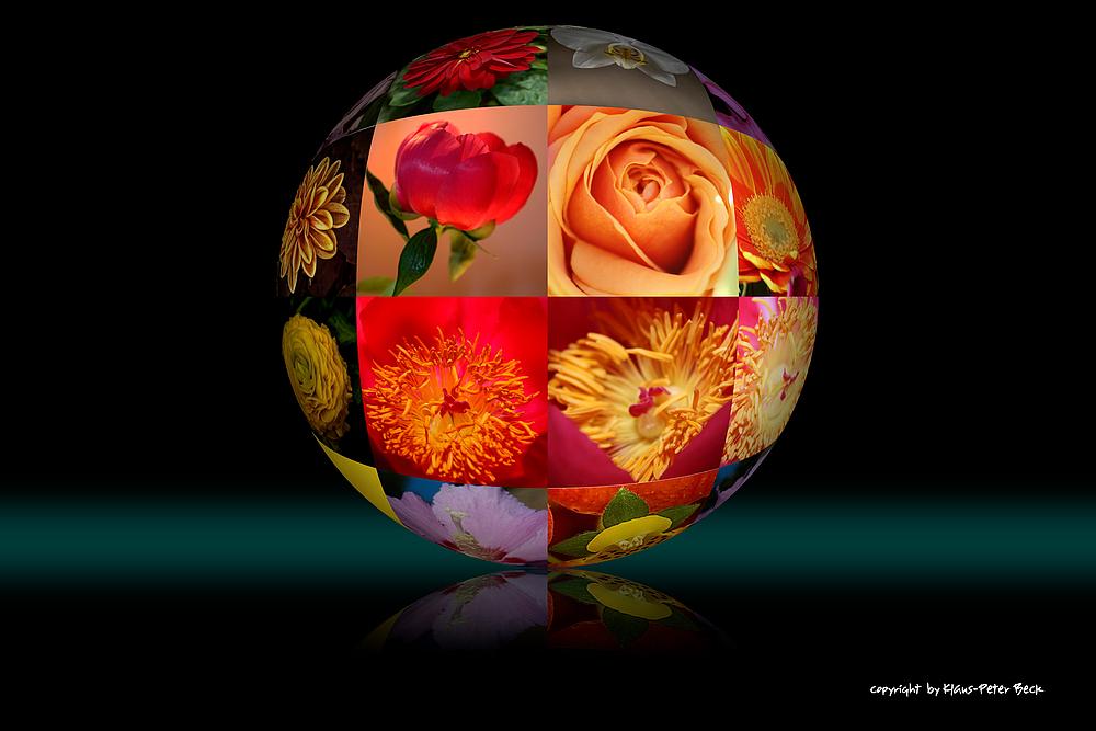Blütenkugel
