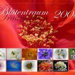 Blütentraum 2008