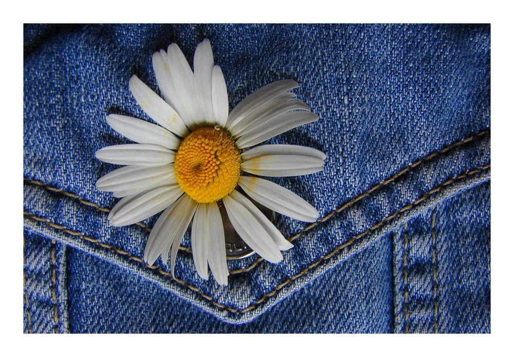 Blume im Knopfloch