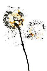 Blume Nr. 102