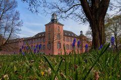 Blumen am Schloss Kalkum