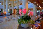 Blumen an der Rezeption (flores en la recepción)