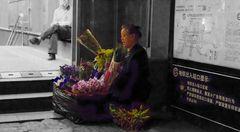 Blumen für ...