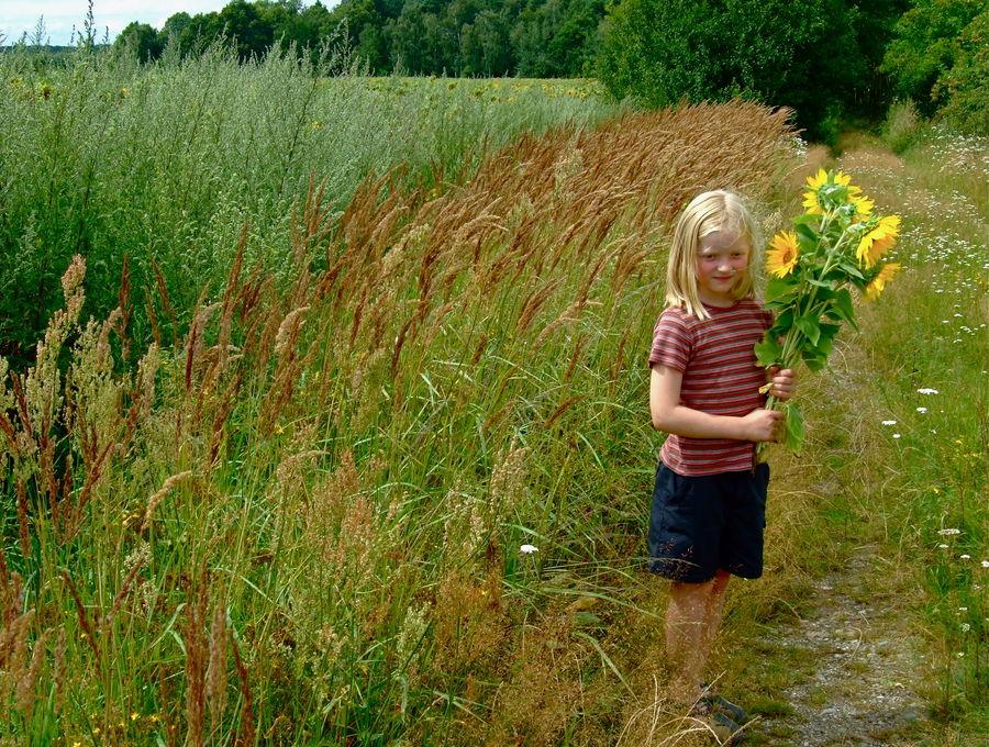 °°° Blumen für Papa Benno's Grab °°° Am Wegesrand gepflückt °°° Auch Oma