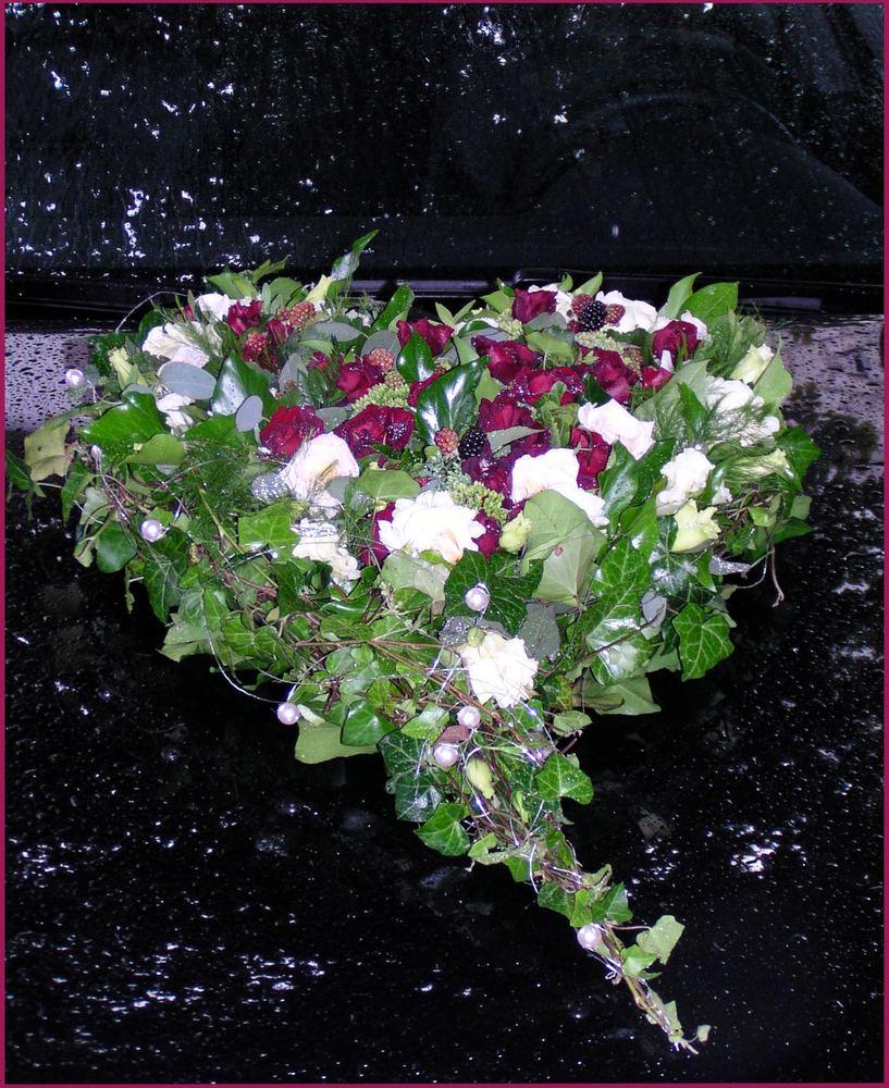 Blumen im Regen...
