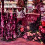 Blumen in Hülle und Fülle