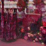 Blumen in Hülle und Fülle... unbearbeitet