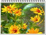 Blumen-Kugel-Spielerei am Sonntag