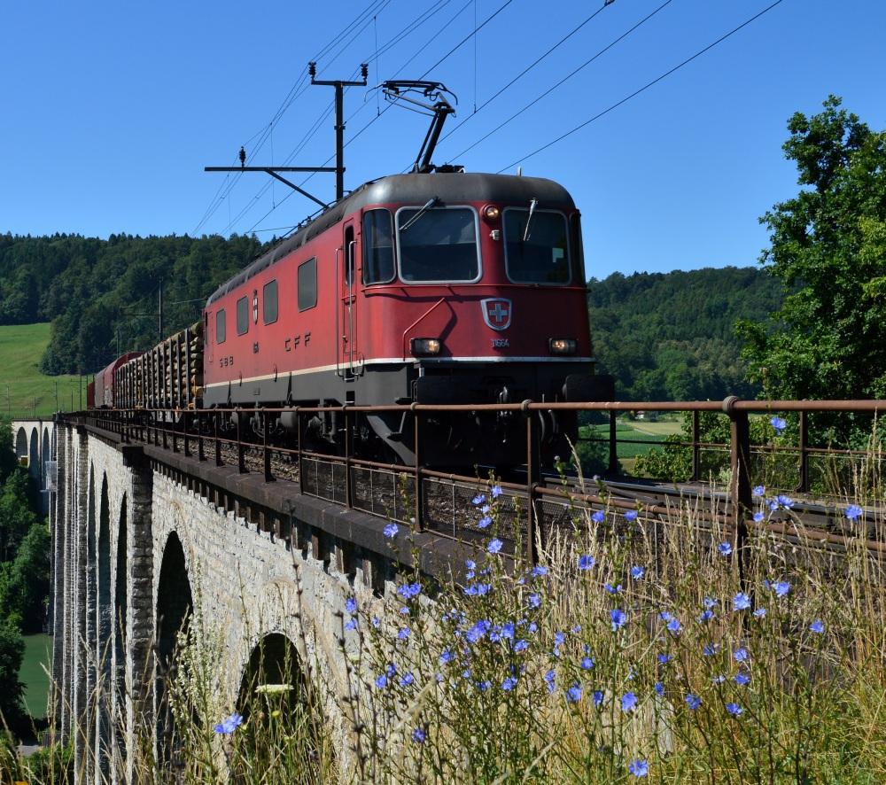 Blumen mit Rheinviadukt
